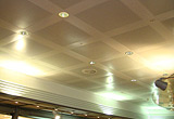 PANEL CEILINGS - BUILDINGS 010